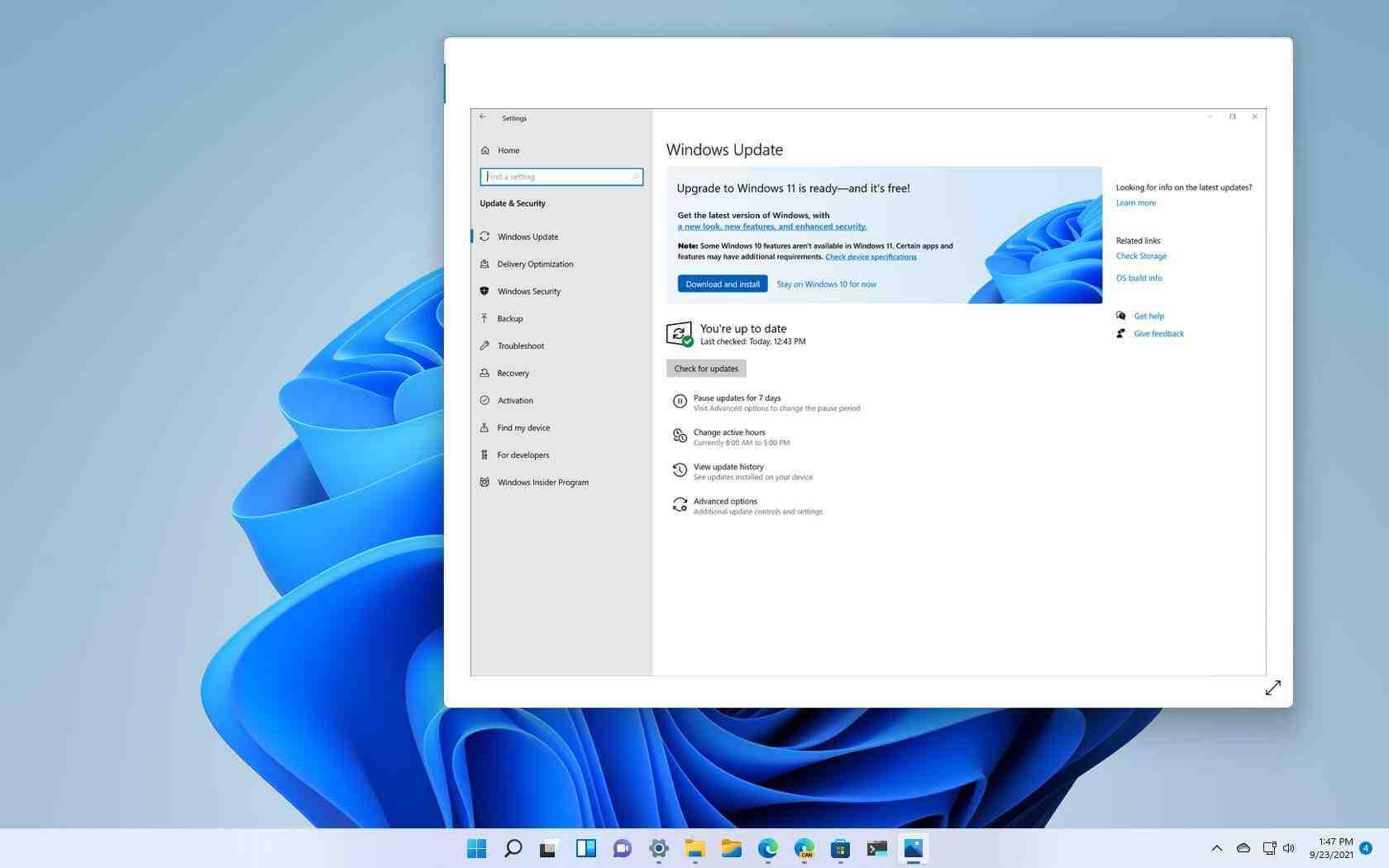 Windows 11: la build 22000.194 disponible en Release Preview